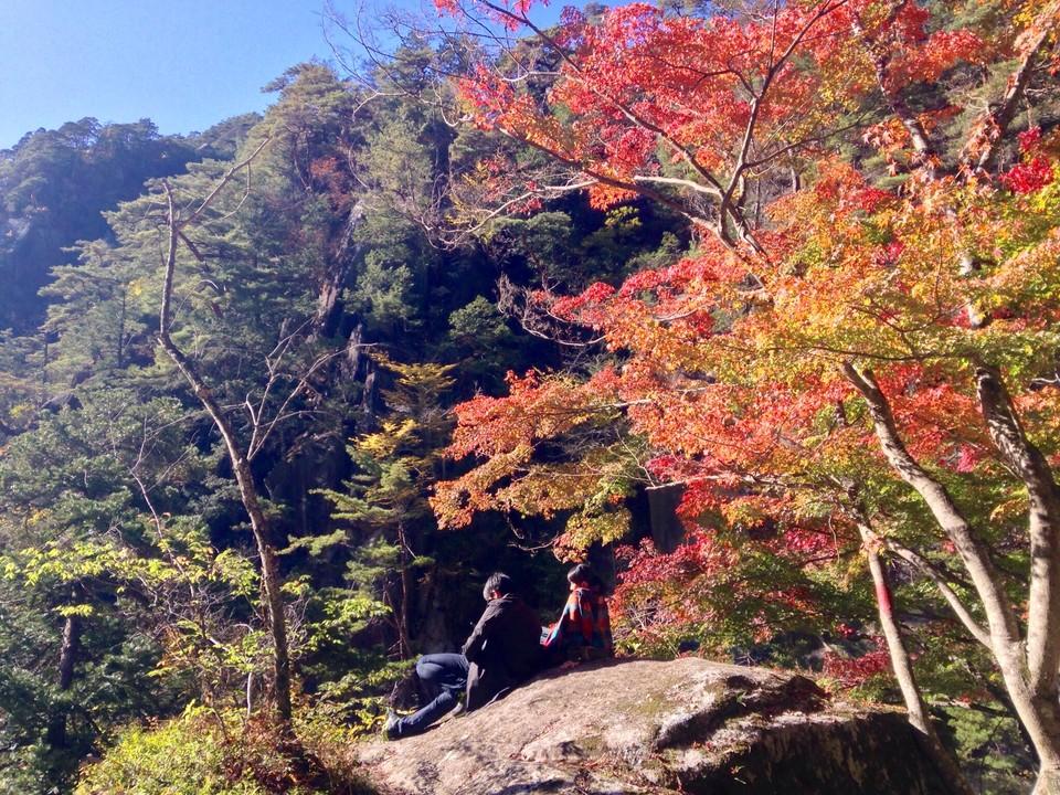 [Японцы наслаждаются сезоном осенних листьев]
